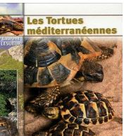 Les tortues meditaranneenes